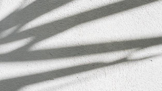 Texture di sfondo astratto bianco e nero di foglie di ombre su un muro di cemento