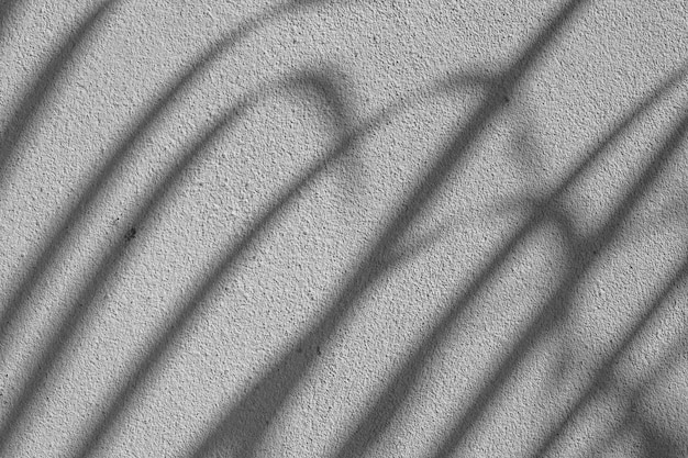 Trama di sfondo astratto bianco e nero di foglie di ombre su un muro di cemento.