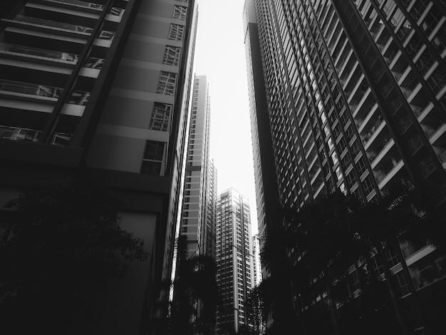 Primo piano di edifici alti in bianco e nero