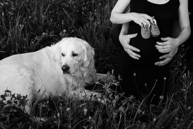 Foto in bianco e nero del labrador sdraiato nell'erba e dei suoi proprietari, coppia incinta che tiene le scarpe per bambini. . in attesa di bambino. aggiunta alla famiglia. momenti divertenti. nuova vita.