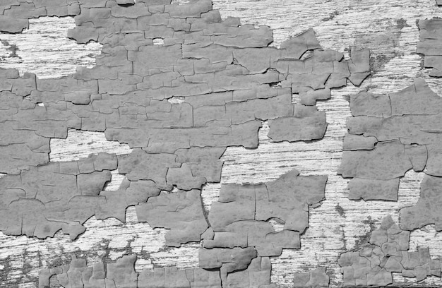 Fondo nero e bianco di struttura della parete della crepa