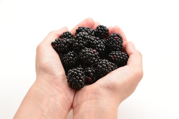Blackberry tenuto in mano isolato su sfondo bianco.