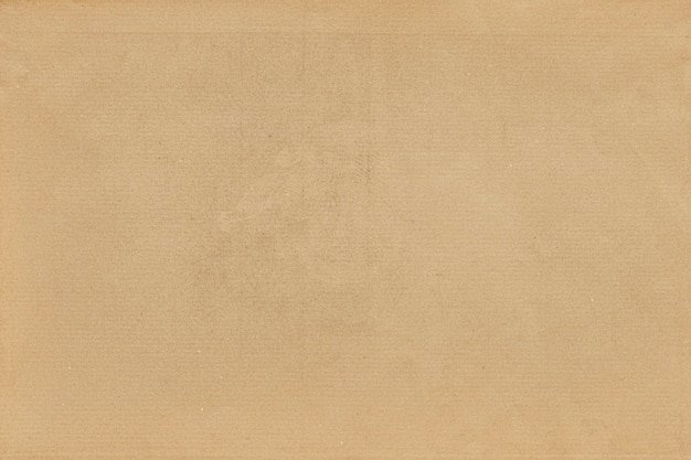 Priorità bassa strutturata di carta marrone in bianco