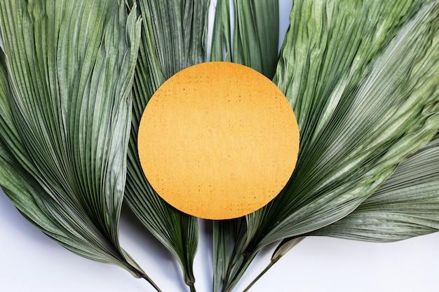 Carta rotonda marrone vuota su foglie secche di palma tropicale