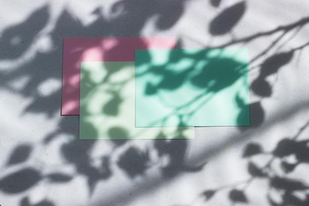 Schede vuote per scrivere con foglie ombra