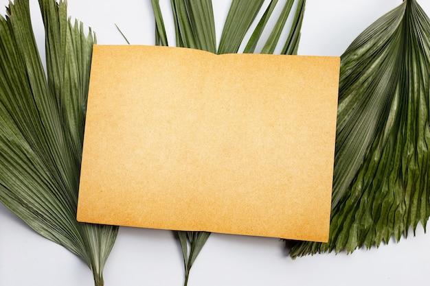 Carta bianca su foglie secche di palma tropicale