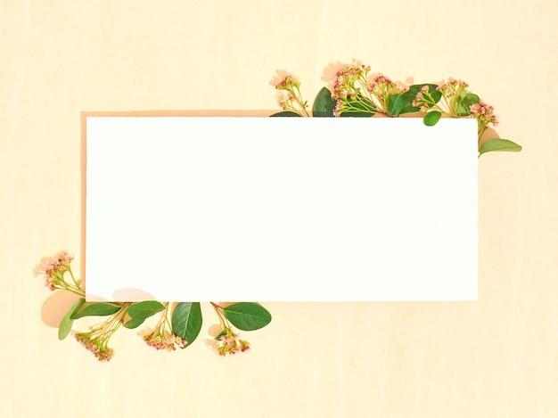 Carta bianca con fiori estivi. disposizione piatta, copia spazio, vista dall'alto.