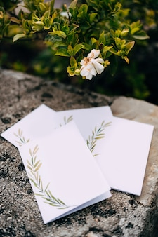 Cartoline vuote con ornamenti giacciono su una piastrella di pietra sotto un cespuglio verde in fiore