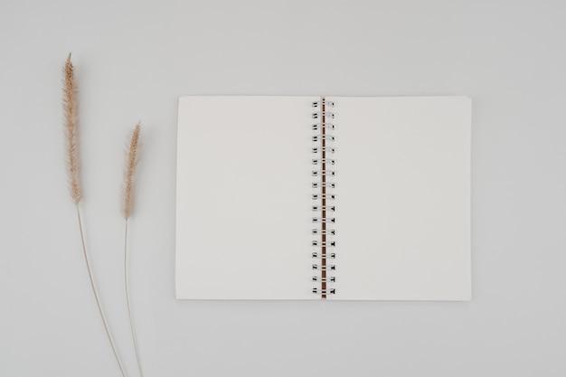Sketchbook con rilegatura a spirale in bianco con fiore secco di coda di volpe ispida