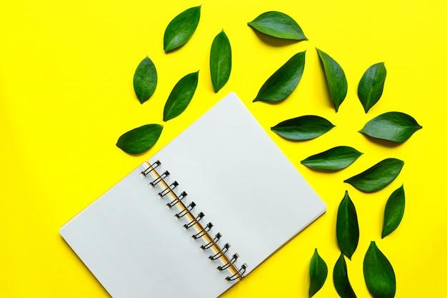 Blocco note in bianco del centro nel centro su fondo giallo con le foglie verdi di ruskus. mockup creativo.