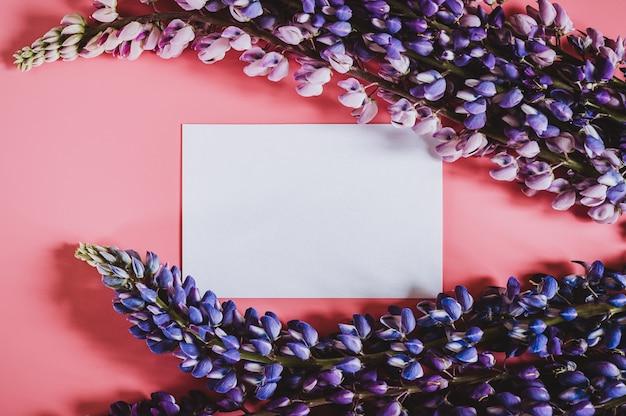 Nota di carta di carta bianca vuota con fiori di lupino in colore blu lilla in piena fioritura su uno sfondo rosa piatto laici.