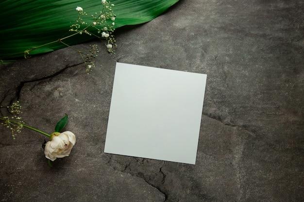 Foglio bianco vuoto con posto per il testo su sfondo grigio con foglie di piante e rametti di eucalipto