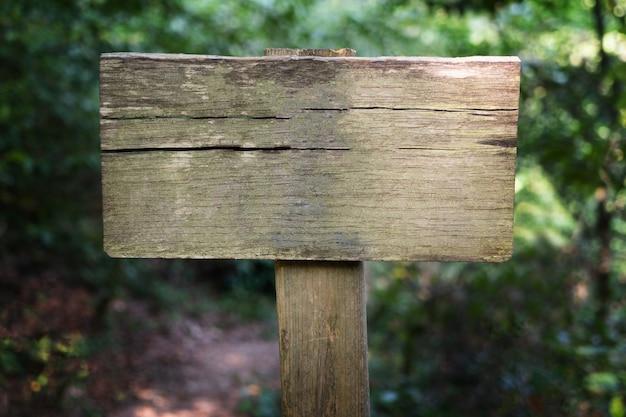 Insegna di legno vuota con lo spazio della copia nella foresta verde, posto vuoto per testo. boschetto di bosso di tasso, parco nazionale di sochi