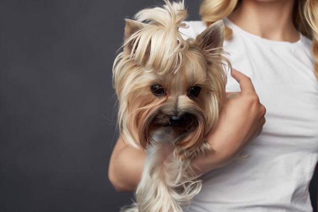 Bionda con un piccolo trucco da cane in posa vista ritagliata