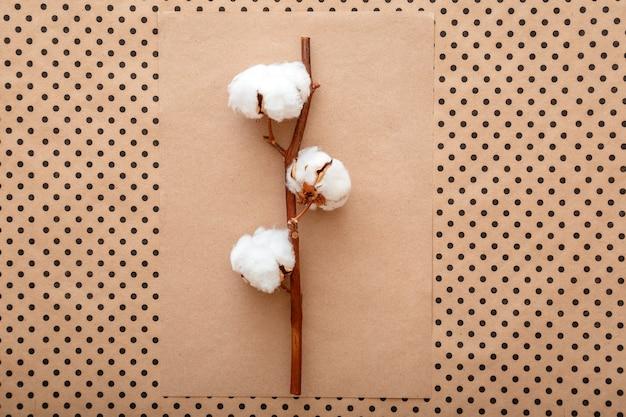 Fiori di cotone in fiore su sfondo vintage di carta artigianale marrone. disposizione creativa della composizione del fiore di cotone su disposizione piana di colore terroso pastello. scena vista dall'alto con un'estetica minimalista.