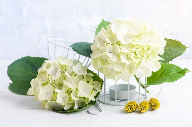 Fiore fiori di ortensia da vicino