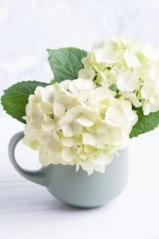 Fiore fiori di ortensia in vaso