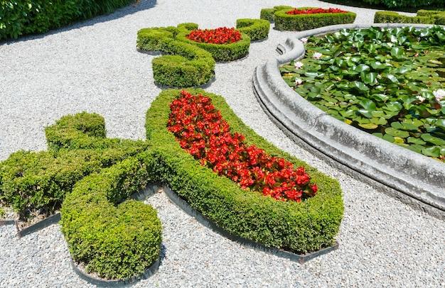 Fiori di azalea rossa sboccianti in flowerbad nel parco estivo