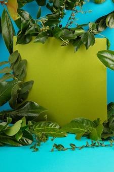 Sfondo blu con foglie e piante fresche verdi.