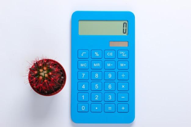 Calcolatrice blu con cactus in vaso su bianco