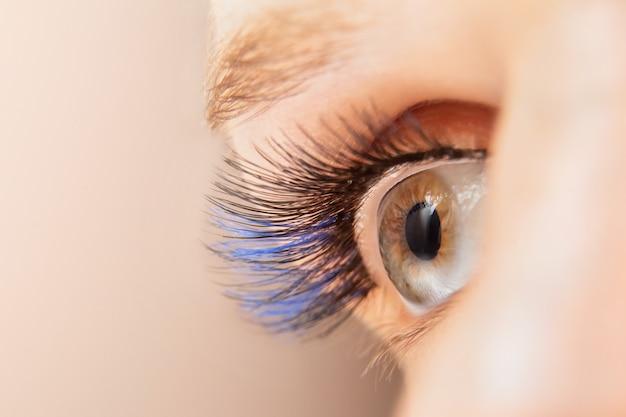 Estensioni delle ciglia di colore blu. primo piano alla moda di ciglia finte, macro dell'occhio della donna