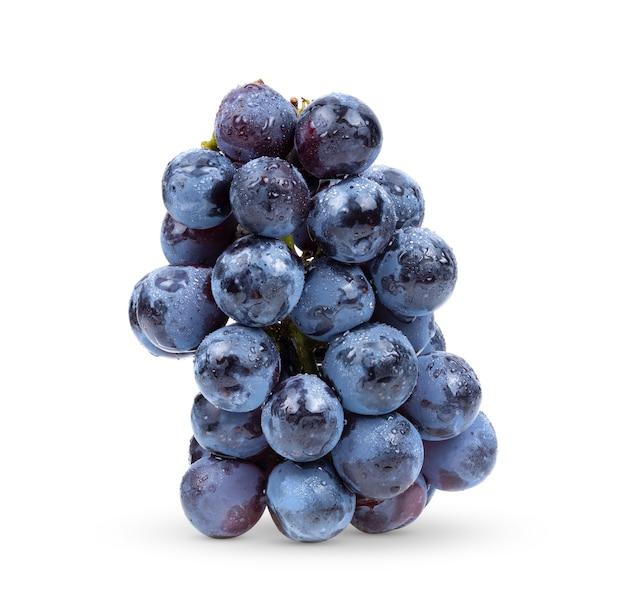 Uva blu isolata su sfondo bianco