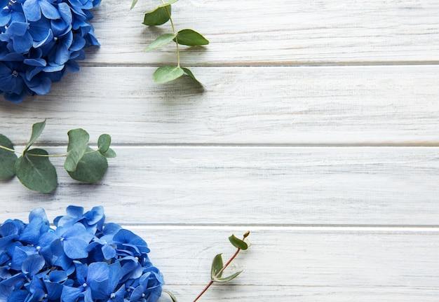 Fiori di ortensia blu