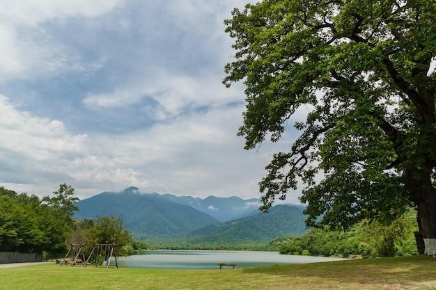 Lago blu con erba e alberi in estate sullo sfondo delle montagne. viaggio in georgia