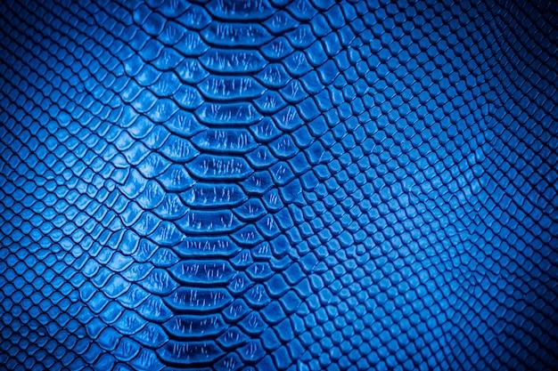 Uso di texture in pelle blu per lo sfondo