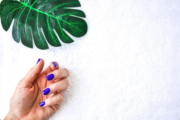 Unghie blu trattamento delle unghie, il concetto di bellezza, cura su asciugamano bianco con sfondo verde di palma ramo. banner per il salone di iscrizione. copia spazio per il testo.