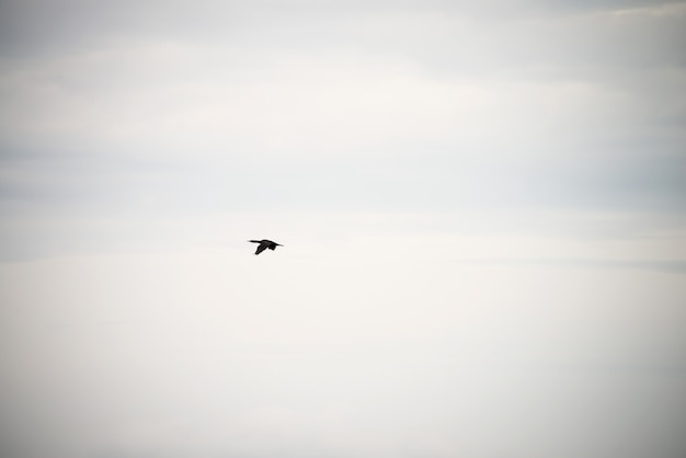 Cielo blu con nuvole e riflesso del sole nell'acqua con posto per il testo. nuvole ansiose, nebbia nel cielo