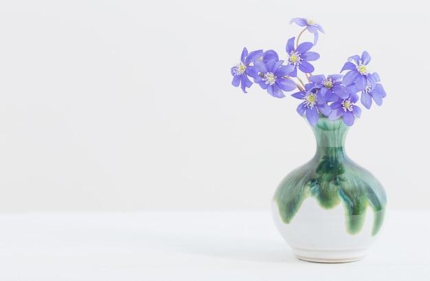 Fiori di primavera blu in vaso di ceramica su bianco