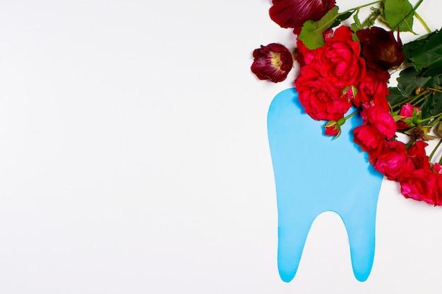 Dente blu e fiori di rosa con posto per il testo su bianco