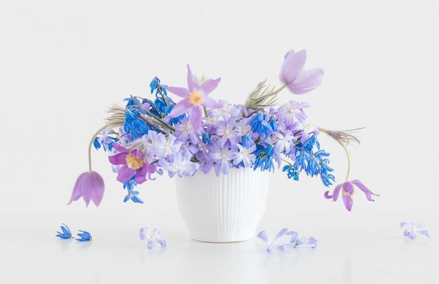 Fiori di primavera blu e viola su superficie bianca