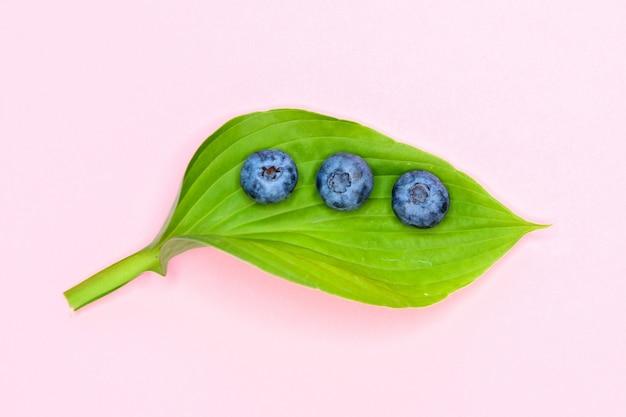 Mirtilli e vitamina c. primo piano di mirtilli freschi. frutti ricchi di alimenti ecologici a base di vitamina c. bacche sane. vista dall'alto