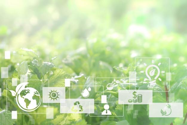 Sfondo sfocato della pianta verde chiaro delicato concetto astratto di agricoltura e tecnologia