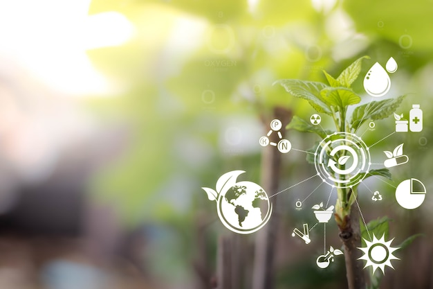 Sfondo sfocato dell'albero di gelso di crescita con tecnologia intelligente e concetto di natura internet delle cose