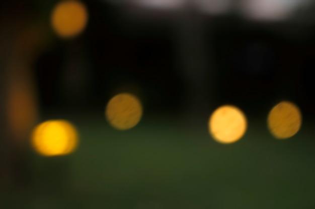 Offuscata le luci nel giardino.