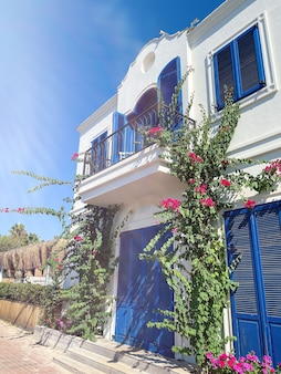 Bodrum, turchia. fiori rosa di bouganville e vecchia porta blu sulla casa bianca a bodrum. casa tradizionale di bodrum.