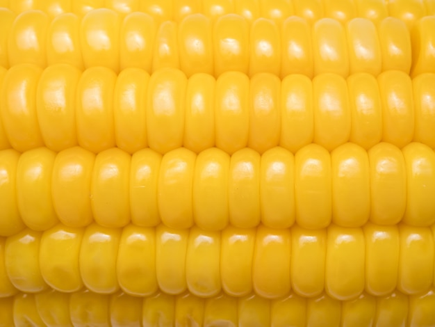 Priorità bassa bollita del mais dolce