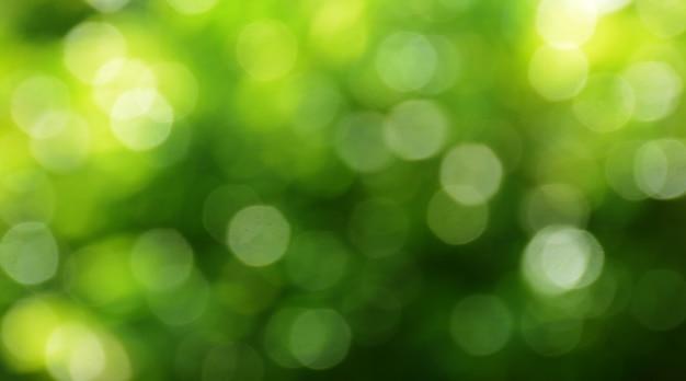 Sfondo bokeh di foglie verdi sull'albero con bokeh verde verde chiaro con un giallo sfocato