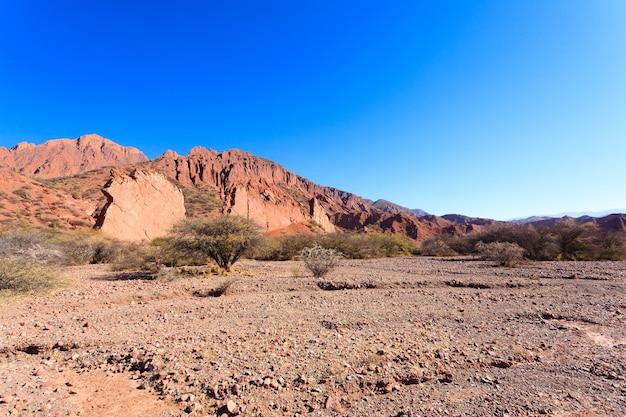 Canyon boliviano con sporcizia e cespugli asciutti