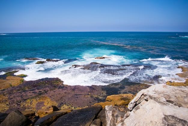 La spiaggia di bondi, in australia