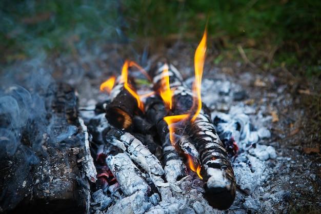Falò, legna da ardere, fuoco arancione brillante. ricreazione all'aperto. calda serata estiva.