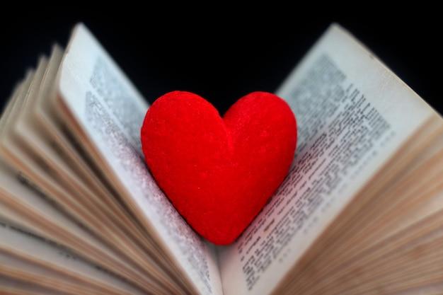 Il cuore rosso dell'amante di libro in un libro, ama il romance in biglietto di s. valentino nel concetto di febbraio