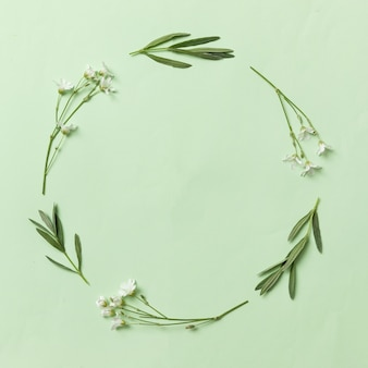 Bordo o cornice per un invito. corona contemporanea per invito con foglie di fiori e piante.