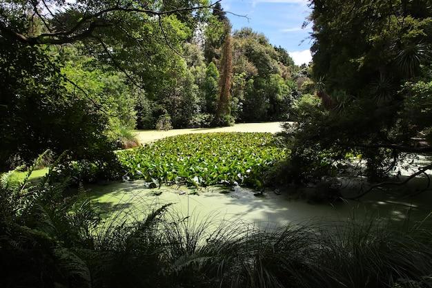 Giardino botanico a christchurch in nuova zelanda