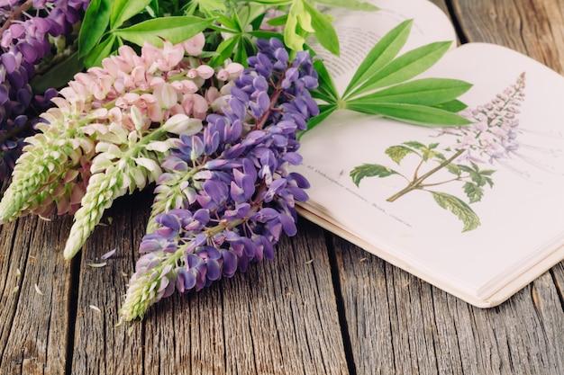 Illustrazione botanica. piante medicinali. erborista vecchio libro aperto