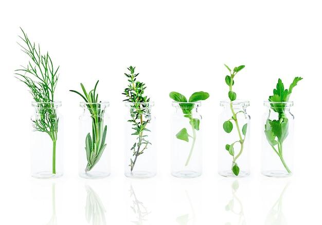 Bottiglia di olio essenziale con erbe isolati su sfondo bianco. foto di alta qualità