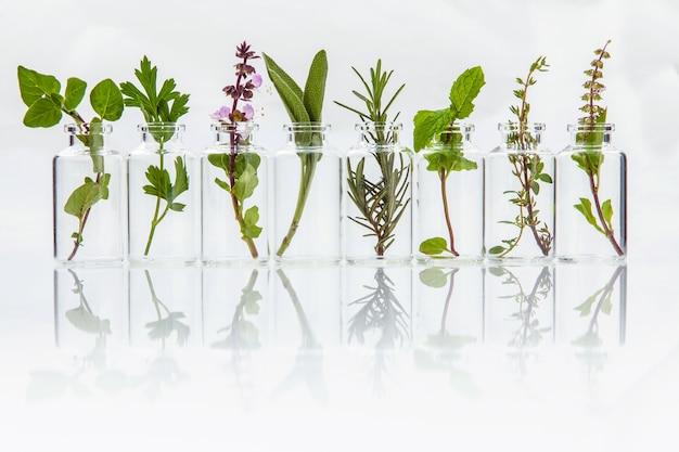 Bottiglia di olio essenziale con erbe istituito su sfondo bianco.